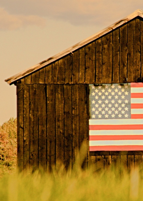 boxwoodclippings_flag + barn