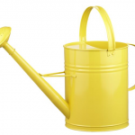 cheery watering can