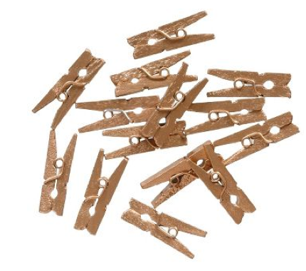 boxwoodclippings_papersource mini golden pegs
