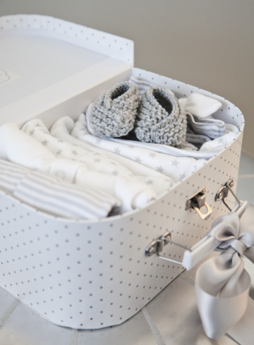 boxwood clippings_baby suitcase