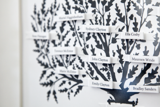 boxwood clippings_family tree printable