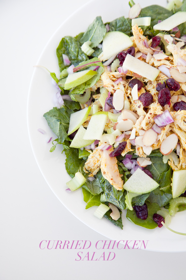 curried chicken salad | boxwood clippings