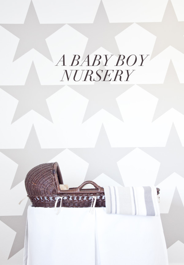 boxwood clippings   star grey and white nursery