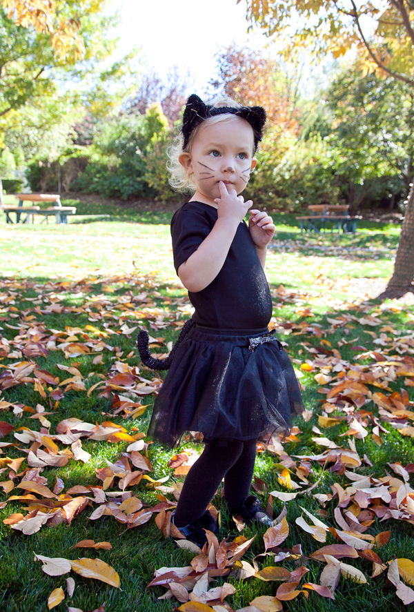 boxwood clippings | little girl halloween costumes