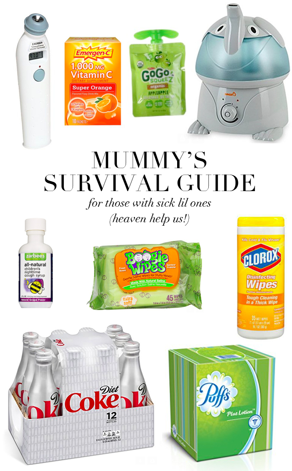 sick mummies survival guide